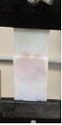 biomaterials1